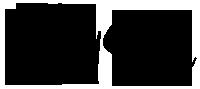 Vivid Saaga Logo